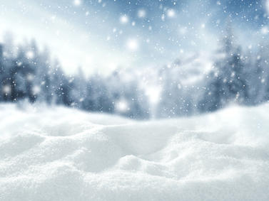 Schnee Wald Winter Fotolia 130246761 Subscription Monthly M