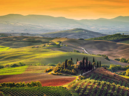 Toskana Weinberg Italien Fotolia 92602052 Subscription Monthly M2